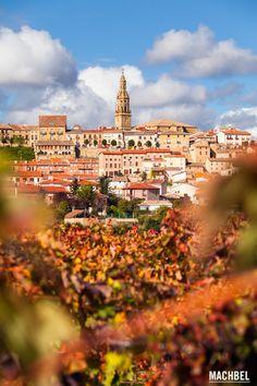Briones y sus viñedos Viñedos en otoño La Rioja España by machbel