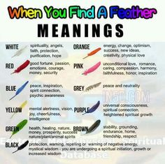 The Spiritual Meaning Behind Different Coloured Feathers That May brown color spiritual meaning - Brown Things Reiki, Coloured Feathers, Colorful Feathers, Black Feathers, Feather Color Meaning, Feather Symbolism, Meaning Of Feathers, Feather Tattoo Meaning, Feather Tattoos