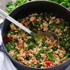 White Bean, Turkey and Kale Stew:  1 large onion,   5 garlic cloves,   1 tsp olive oil,   1 lb ground turkey,   14 oz can diced tomatoes   14 oz can cannellini beans,   2 tsp oregano or thyme,   3/4 tsp salt   1/2 tsp black pepper,   2 bay leaves   1/2 lemon,   3/4 cup kalamata olives,   4 cups kale,   1/2 cup basil,   1/2 cup parsley,
