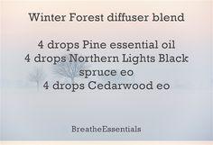 Winter Forest diffuser blend 4 drops Pine essential oil 4 drops Northern Lights Black spruce eo 4 drops Cedarwood eo