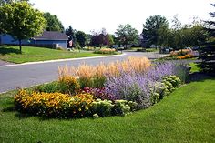 A residential raingarden allows stormwater to be held and treated at each site, eliminating the need for large piping and storage facilities.