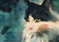watercolor cat - Looks a lot like my Cody! <3