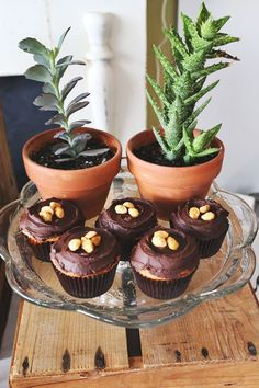 Peanut Butter Cupcakes with Black Coffee Frosting