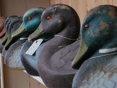 Come quack on by and see the duck and shorebird decoys, part of Berkshire Collects! They are truly amazing! http://berkshiremuseum.org/