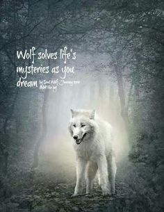 Ancient wolf thoughts