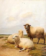 Thomas Sidney Cooper Paintings for Sale | Thomas Sidney Cooper Art Value Price Guide Value In Art, Price Guide, Paintings For Sale, Sydney, Camel, Auction, Artist, Animals, Animales