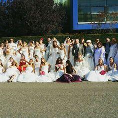 100 bruiden shoot  #kolckfotografie
