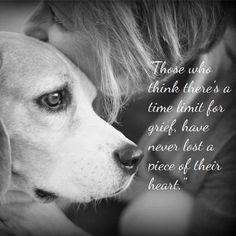 Pets Pet Loss And Grieving Ever Memorial Pet Loss Quotes 24312 in post at April 2018 pm Pet Loss Grief, Loss Of Dog, Pet Loss Quotes, Losing A Dog Quotes, Pet Poems, Miss My Dog, Animals And Pets, Cute Animals, Pet Remembrance