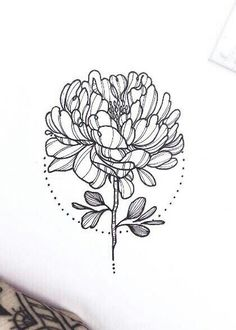 This love is alive back from the dead Time Tattoos, New Tattoos, Cool Tattoos, Carnation Tattoo, Stitch Drawing, Tattoo Feminina, Motif Floral, Piercing Tattoo, Future Tattoos