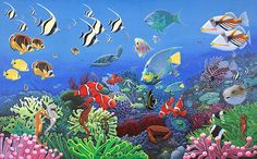 boys room or playroom wallpaper or peel and stick Wonders Of The Sea via MuralsYourWay.com