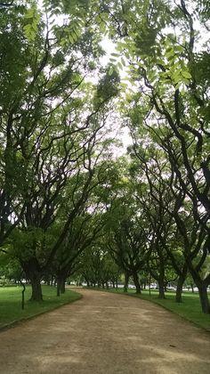 #pelocaminho Parque Marinha do Brasil - Porto Alegre/RS