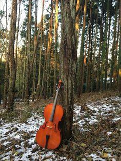 winter cello
