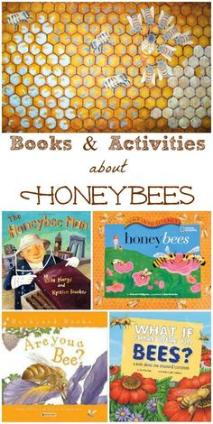 Great books & fun facts about honeybees for kids -- this is a great spring or summer STEM activity too!