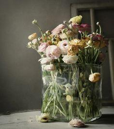 ♆ Blissful Bouquets ♆ gorgeous wedding bouquets, flower arrangements & floral centerpieces - ranunculus