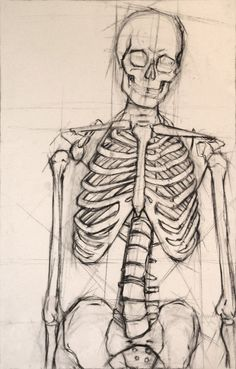 This is a structural analysis of a human skeleton I did in my figure drawing class. drawing human Skeleton by on DeviantArt Skeleton Drawings, Skeleton Art, Cool Art Drawings, Pencil Art Drawings, Art Drawings Sketches, Skeleton Makeup, Mermaid Skeleton, Skeleton Flower, Skeleton Body