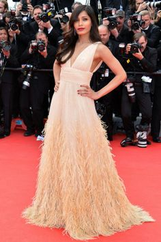 Freida Pinto in a custom tulle and feathered Michael Kors frock.