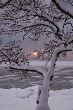 Winter Sunset, Lauttasaari, Finland ...