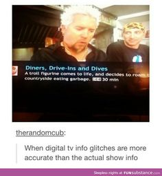 funny meme of a digital tv glitch that shows more accurate info of Guy Fieri Stupid Funny Memes, Funny Fails, The Funny, Hilarious, Funny Stuff, Random Stuff, Awesome Stuff, Funny Things, Youre Cute