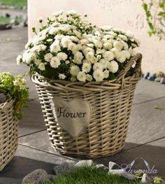 košík na kvety