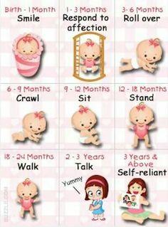 Cute guide