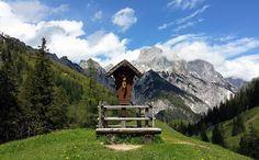So schön blüht zur Zeit der Enzian auf der Bindalm - Berchtesgadener Land Blog