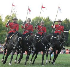 RCMP musical ride on Canada Day, Ottawa Canadian Things, I Am Canadian, Canadian Travel, Roi George, Police, Horse Facts, Canada 150, Chuck Wagon, Largest Countries
