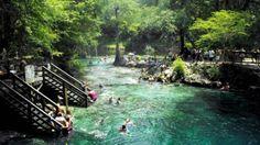 Madison Blue Springs State Park florida travels