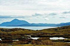 Clare Islanders Could Rock Irish Whiskey Boat