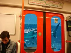 Since I have an appointment today in another part of Prague, I am thinking about ways how the Prague transport authorities could solve the problem with flooded metro tunnels in the most elegant manner. Prague Transport, Weird Things, Submarines, Transportation, Canning, Home Canning, Conservation