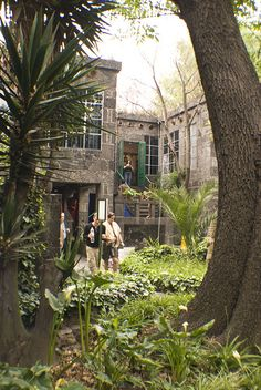 "Frida Kahlo's gardens in what was her home and is now the Frida Kahlo Museum. Mexico City, MEXICO. ""CASA AZUL"""