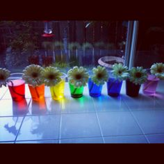 1000 images about school science on pinterest science for White rainbow project
