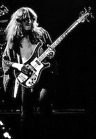 Rush Live in London 1978 Rush Concert, A Farewell To Kings, Rickenbacker Bass, Rush Band, Geddy Lee, Museum Of Childhood, The Blitz, Rock Of Ages, Music Pics