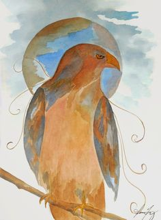 Conscious Art Studios: Red Tailed Hawk ~ His Spirit and Symbolic Meaning