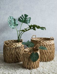 home accessories vintage Handwoven Wicker Baskets at Rose amp; Buy online now from Rose amp; Grey, eclectic home accessories and stylish furniture for vintage and modern living