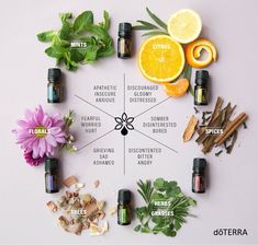 Why Choose doTerra? Before I get into how to buy doTerra Essential Oils, they are not the only brand on the market. You can find lots of essential Doterra Blends, Doterra Essential Oils, Essential Oil Diffuser, Essential Oil Blends, Essential Oils For Chakras, Emotions And Essential Oils, Doterra Emotional Aromatherapy, Doterra Forgive, Doterra Motivate