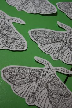 Sarah J. Loecker : Moth Migration- My moth contribution to the wonderful exhibition by Hillary Lorenz, Moth Migration, opening on May in Gympie, Australia. Sarah J, Paper Craft, Moth, Something To Do, Artsy, Butterfly, Australia, Gardening, Journal