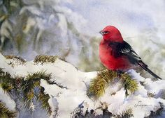 christmas watercolor bird by my paintings, via Flickr