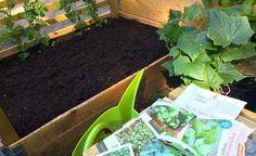 Med bokashi-kompost omdannes ALT matavfall til næringsrik jord på få uker. Håndter matavfall inne, uten vond lukt. Bokashinorge.no lager og selger bokashi.