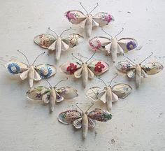 Mister Finch's moths