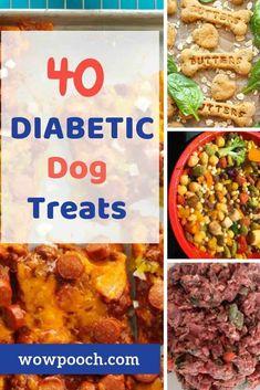 Diabetic Dog Treat Recipe, Diabetic Dog Food, Easy Dog Treat Recipes, Dog Recipes, Raw Food Recipes, Healthy Recipes, Diabetic Recipes, Delicious Recipes, Easy Recipes