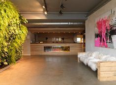 Refresh Agency office in Soho Copenhagen reception / green living wall
