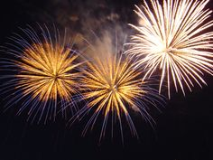12 fun Independence Day weekend events in and around Houston - fireworks, nature, a Frozen sing-a-long and more! 4th Of July Fireworks, Fourth Of July, Wedding Fireworks, Oprah Winfrey, Fireworks Wallpaper, New Year Wishes, Cute Purses, Cute Creatures, Vintage Handbags