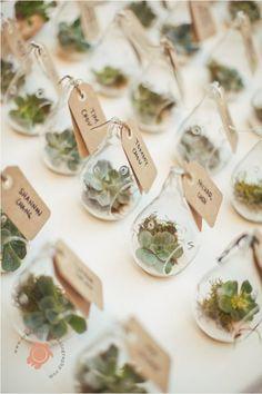 Resultado de imagen para succulent wedding favors