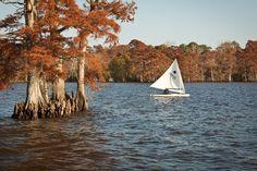 Edenton Bay, Edenton, North Carolina (Photo by Kip Shaw)