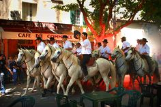 The Abrivado. where the bulls are led through the streets during the bull event the third week of June in Mouries, Provence http://www.softseattravel.com/Bull-Event-Provence-Festival-…