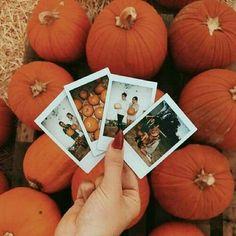 Fall Pictures, Fall Photos, Vsco, Samhain, Autumn Cozy, Autumn Fall, Winter, Autumn Aesthetic, Fall Baby