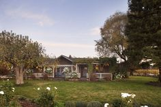 4 BR/4 BA Vineyard Retreat - Solar Heated Pool, Spa, Views - Healdsburg Heated Pool, Wine Country, Lawn And Garden, Beautiful Homes, Swimming Pools, Vineyard, Solar, Mansions, House Styles