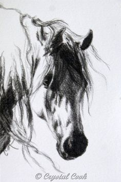 Arabian Horse Art Original Drawing Black and White miniature art OOAK grey. $30.00, via Etsy.