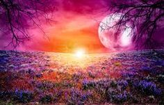 fantasy garden background - Google Search