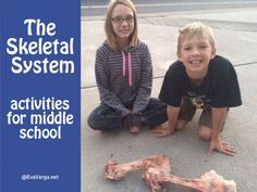 To explore the skeletal system, I thought something new and fun would be to dissect a bone. Teaching Biology, Science Biology, Science Lessons, Life Science, Homeschool Math Curriculum, Homeschooling, Hands On Activities, Science Activities, Skeletal System Activities